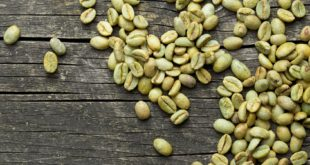 właściwości zielonej kawy