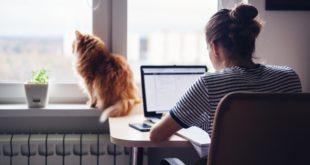 jak dbać o domowy komputer