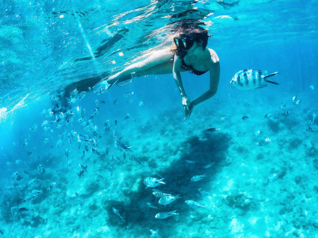 Snorkeling - czyli pływanie z zanurzoną głową